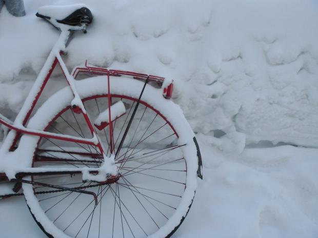 free big snow
