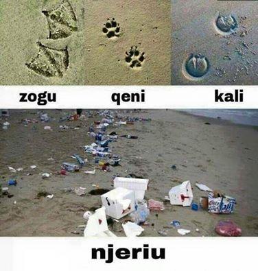 kafshet jane me njerez se njerezit